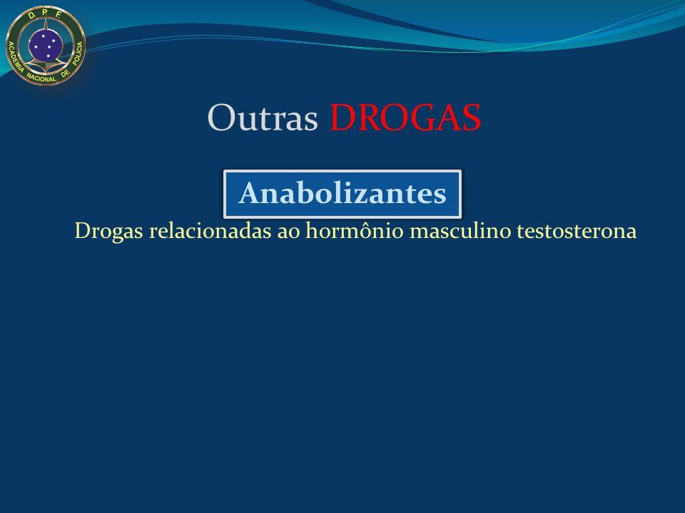 Apreensão de 50 mil comprimidos de ecstasy em Fortaleza