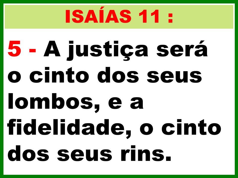 ISAÍAS 11 : 5 - A justiça será o cinto dos seus lombos, e a fidelidade, o cinto dos seus rins.