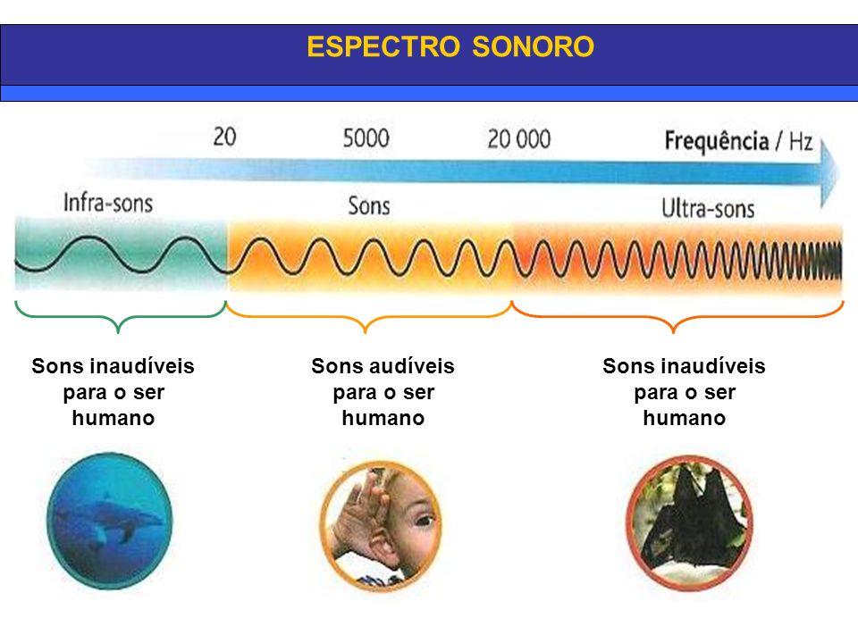 ESPECTRO SONORO Sons inaudíveis para o ser humano Sons audíveis para o ser humano Sons inaudíveis para o ser humano