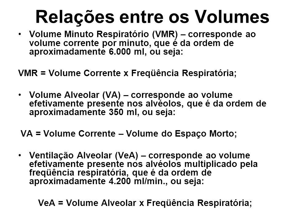 Relações entre os Volumes Volume Minuto Respiratório (VMR) – corresponde ao volume corrente por minuto, que é da ordem de aproximadamente 6.000 ml, ou seja: VMR = Volume Corrente x Freqüência Respiratória; Volume Alveolar (VA) – corresponde ao volume efetivamente presente nos alvéolos, que é da ordem de aproximadamente 350 ml, ou seja: VA = Volume Corrente – Volume do Espaço Morto; Ventilação Alveolar (VeA) – corresponde ao volume efetivamente presente nos alvéolos multiplicado pela freqüência respiratória, que é da ordem de aproximadamente 4.200 ml/min., ou seja: VeA = Volume Alveolar x Freqüência Respiratória;