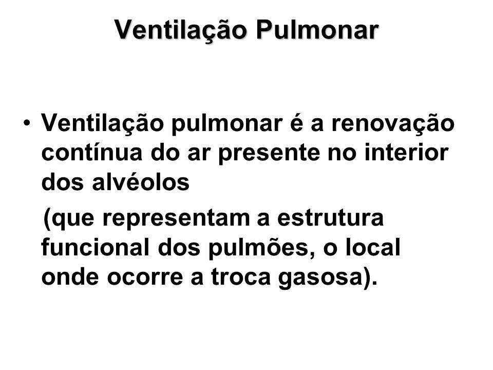 Ventilação Pulmonar Ventilação pulmonar é a renovação contínua do ar presente no interior dos alvéolos (que representam a estrutura funcional dos pulmões, o local onde ocorre a troca gasosa).
