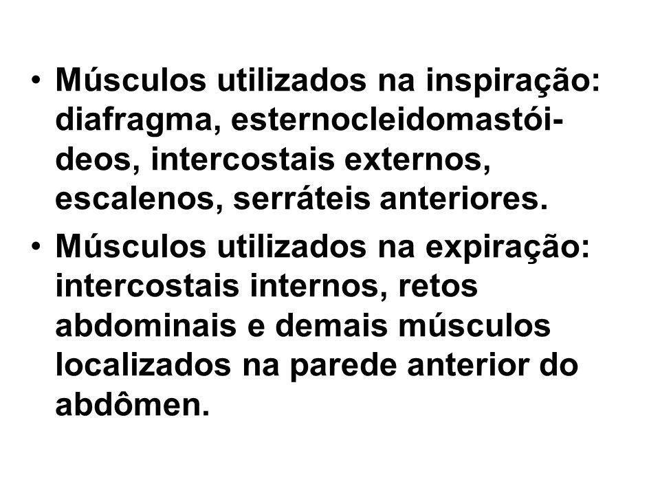 Músculos utilizados na inspiração: diafragma, esternocleidomastói- deos, intercostais externos, escalenos, serráteis anteriores.
