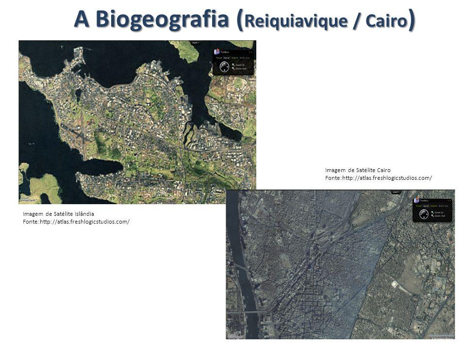 A Biogeografia ( Reiquiavique / Cairo ) Imagem de Satélite Islândia Fonte:http://atlas.freshlogicstudios.com/ Imagem de Satélite Cairo Fonte:http://at