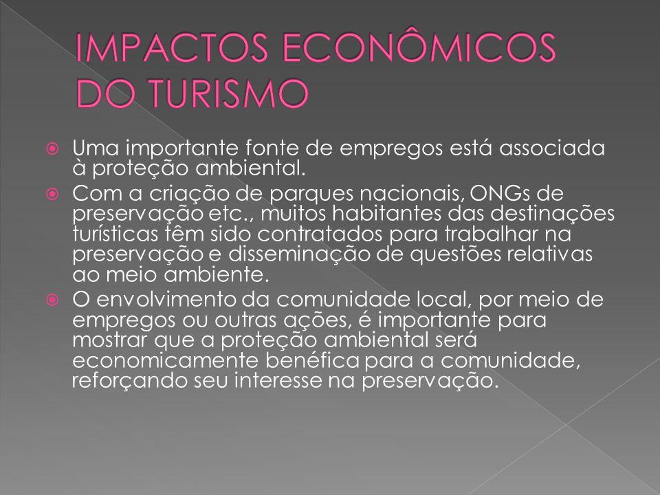 Uma importante fonte de empregos está associada à proteção ambiental.