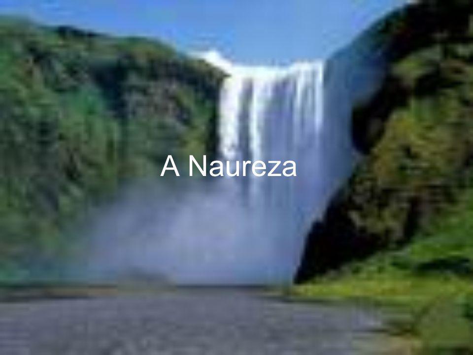 A Naureza