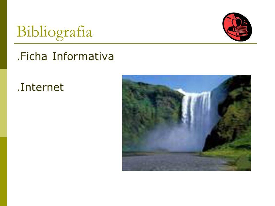 Bibliografia.Ficha Informativa.Internet