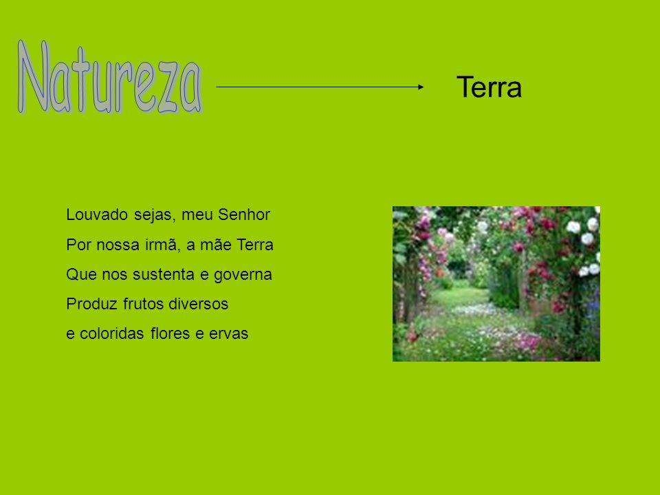 Trabalho realizado por: ---- > Sara Faustino nº 18 ---- > Sara Santos nº 19