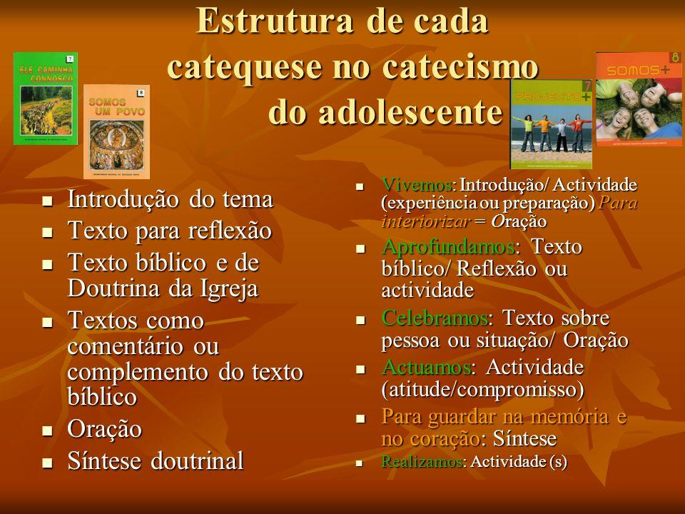 Estrutura de cada catequese no catecismo do adolescente Introdução do tema Introdução do tema Texto para reflexão Texto para reflexão Texto bíblico e