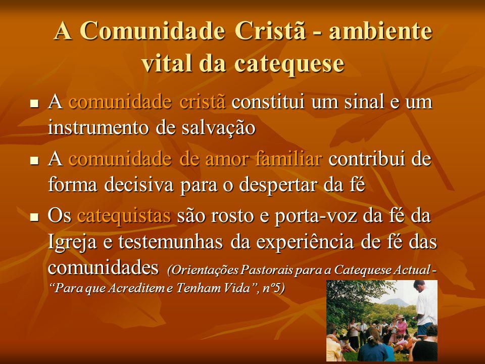 A Comunidade Cristã - ambiente vital da catequese A comunidade cristã constitui um sinal e um instrumento de salvação A comunidade cristã constitui um
