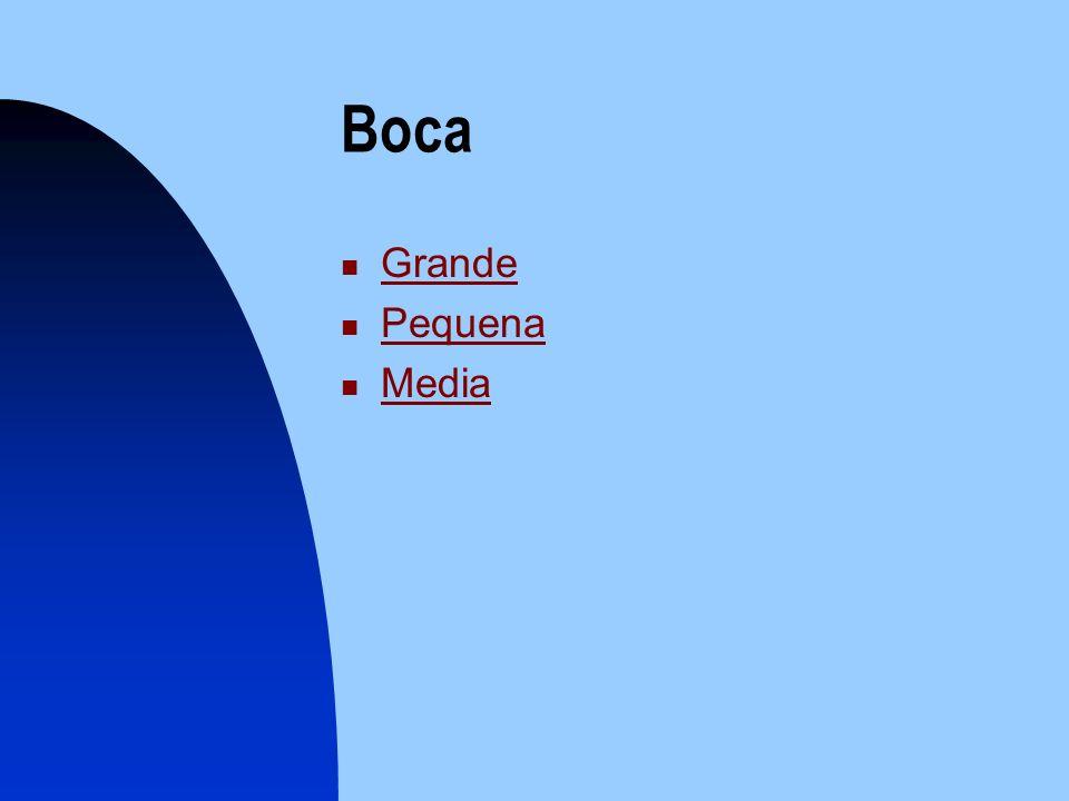 Boca Grande Pequena Media
