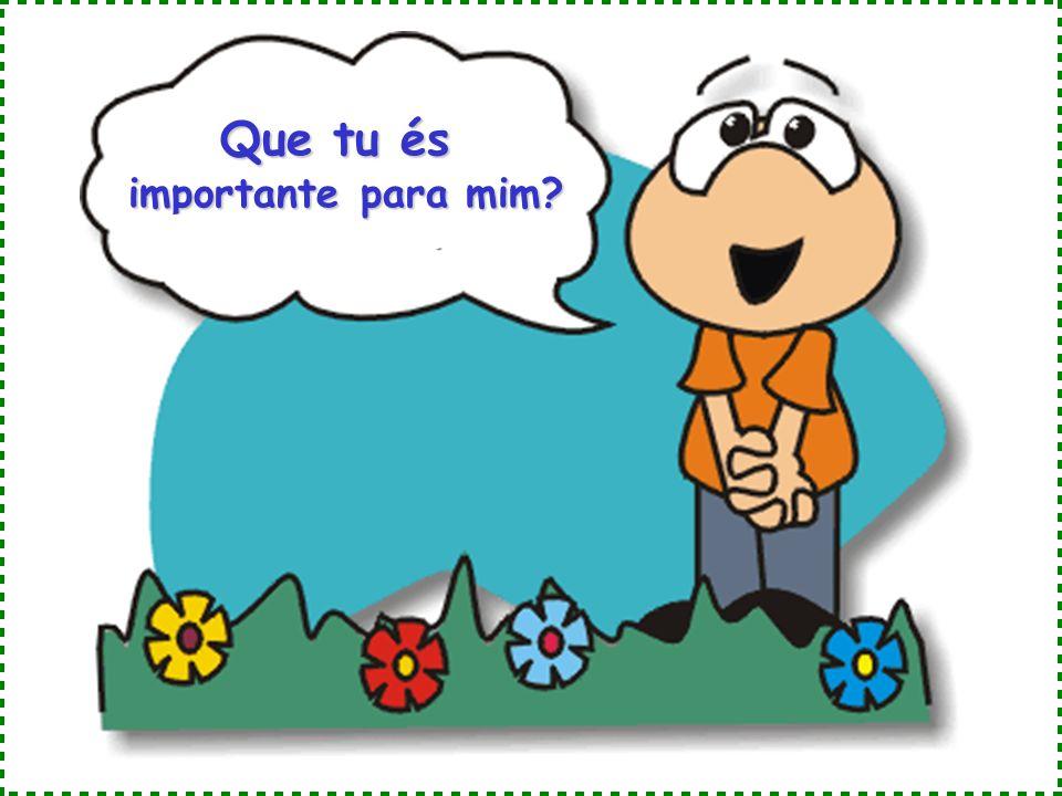 Que tu és importante para mim?