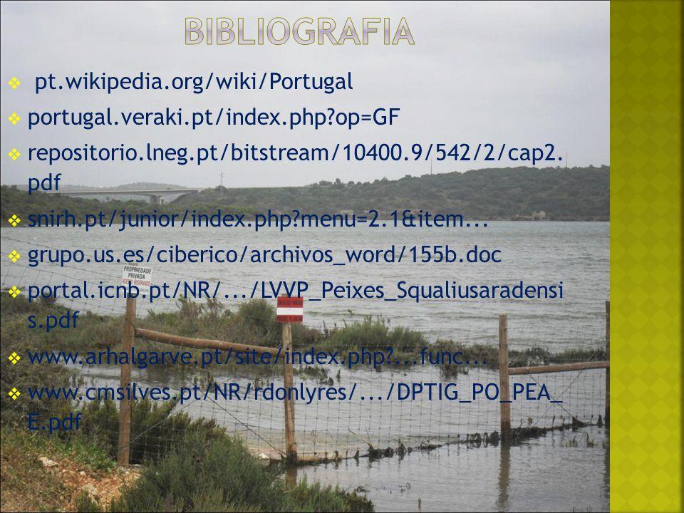 pt.wikipedia.org/wiki/Portugal portugal.veraki.pt/index.php?op=GF repositorio.lneg.pt/bitstream/10400.9/542/2/cap2.
