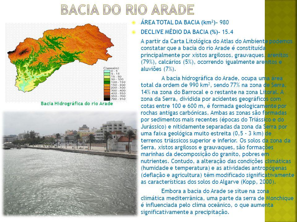 ÁREA TOTAL DA BACIA (km 2 )- 980 DECLIVE MÉDIO DA BACIA (%)- 15.4 A partir da Carta Litológica do Atlas do Ambiente podemos constatar que a bacia do rio Arade é constituída principalmente por xistos argilosos, grauvaques, arenitos (79%), calcários (5%), ocorrendo igualmente arenitos e aluviões (7%).