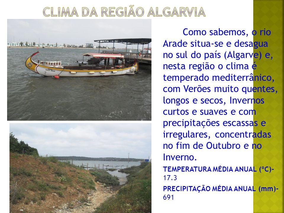 A paisagem urbana é a paisagem predominante do rio Arade.