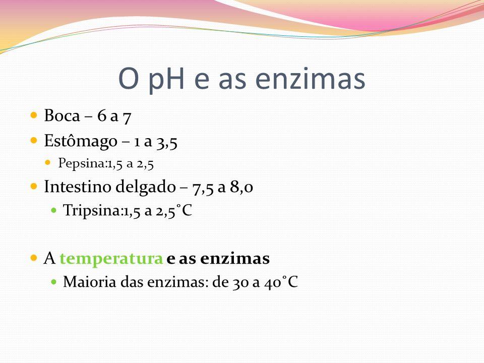 O pH e as enzimas Boca – 6 a 7 Estômago – 1 a 3,5 Pepsina:1,5 a 2,5 Intestino delgado – 7,5 a 8,0 Tripsina:1,5 a 2,5˚C A temperatura e as enzimas Maio