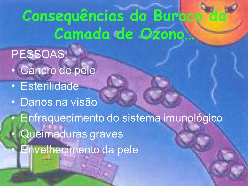 Consequências do Buraco da Camada de Ozono… PESSOAS: Cancro de pele Esterilidade Danos na visão Enfraquecimento do sistema imunológico Queimaduras gra