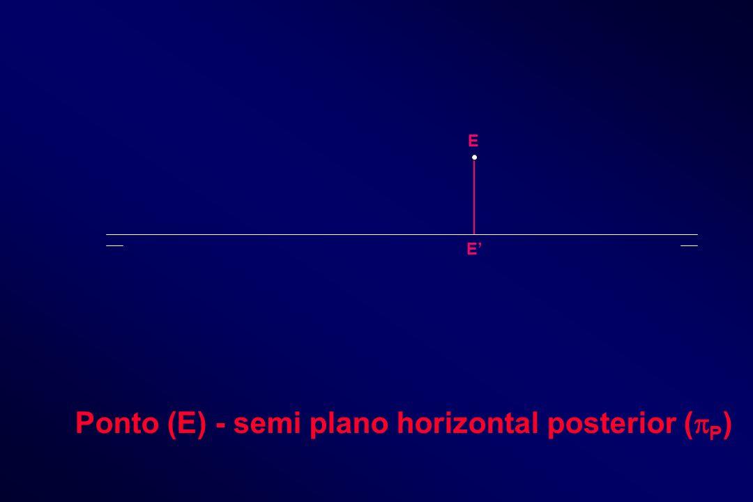 E E Ponto (E) - semi plano horizontal posterior ( P )