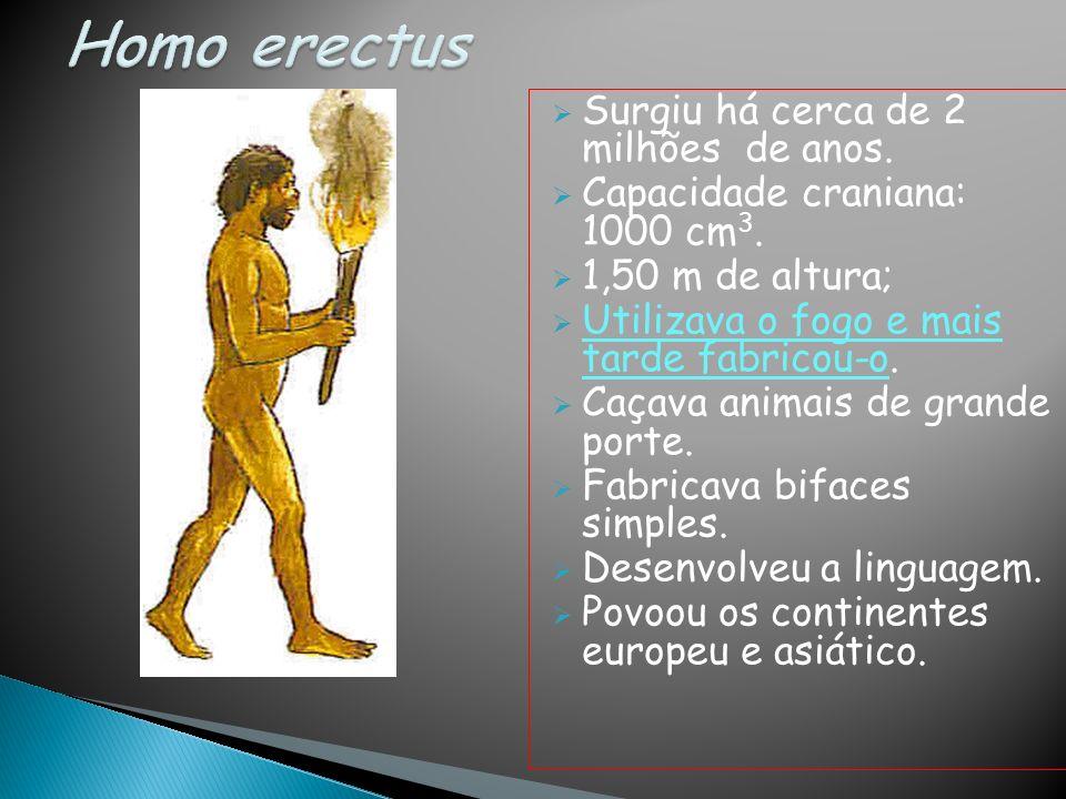 Surgiu há cerca de 2 milhões de anos. Capacidade craniana: 1000 cm 3. 1,50 m de altura; Utilizava o fogo e mais tarde fabricou-o. Caçava animais de gr