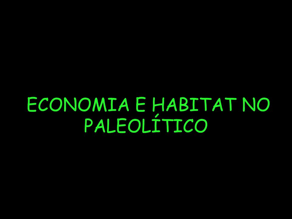 ECONOMIA E HABITAT NO PALEOLÍTICO