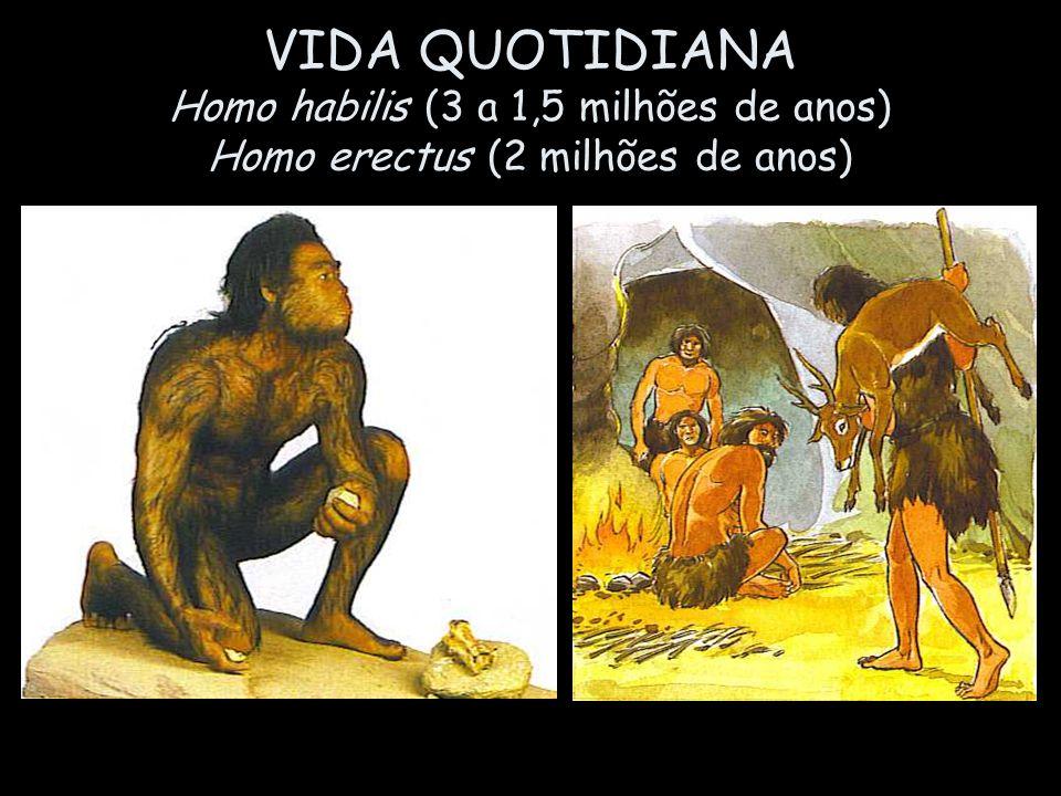 VIDA QUOTIDIANA Homo habilis (3 a 1,5 milhões de anos) Homo erectus (2 milhões de anos)