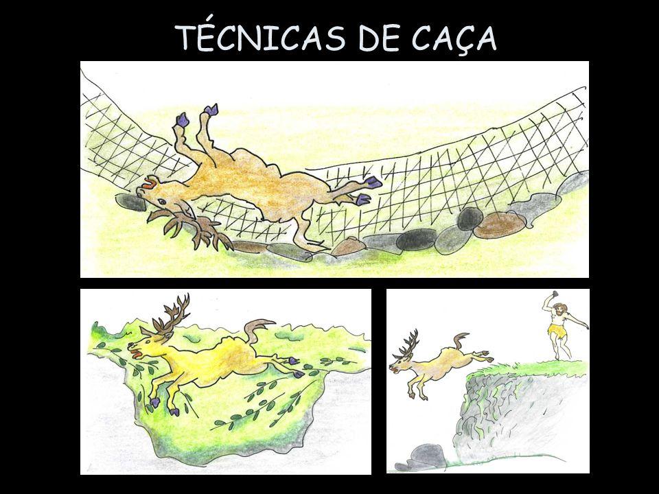 TÉCNICAS DE CAÇA