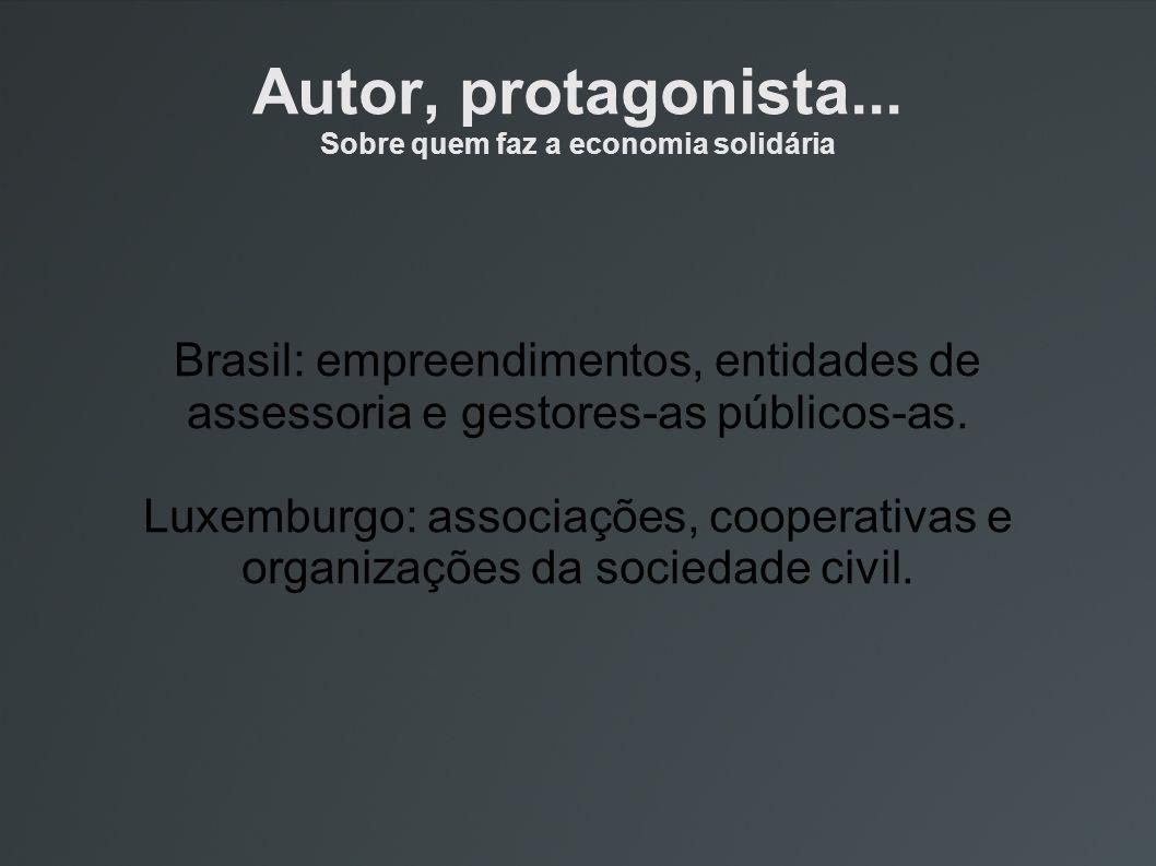 Autor, protagonista... Sobre quem faz a economia solidária Brasil: empreendimentos, entidades de assessoria e gestores-as públicos-as. Luxemburgo: ass