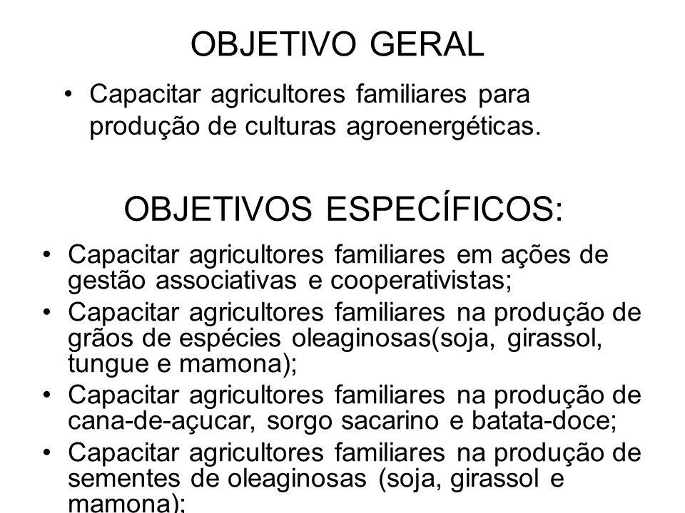OBJETIVO GERAL Capacitar agricultores familiares para produção de culturas agroenergéticas.