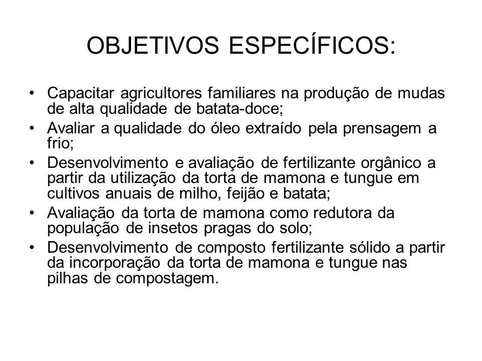 OBJETIVOS ESPECÍFICOS: Capacitar agricultores familiares na produção de mudas de alta qualidade de batata-doce; Avaliar a qualidade do óleo extraído pela prensagem a frio; Desenvolvimento e avaliação de fertilizante orgânico a partir da utilização da torta de mamona e tungue em cultivos anuais de milho, feijão e batata; Avaliação da torta de mamona como redutora da população de insetos pragas do solo; Desenvolvimento de composto fertilizante sólido a partir da incorporação da torta de mamona e tungue nas pilhas de compostagem.
