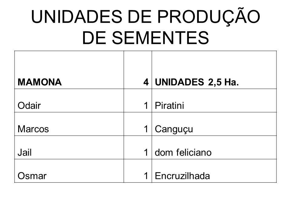 UNIDADES DE PRODUÇÃO DE SEMENTES MAMONA4UNIDADES 2,5 Ha.