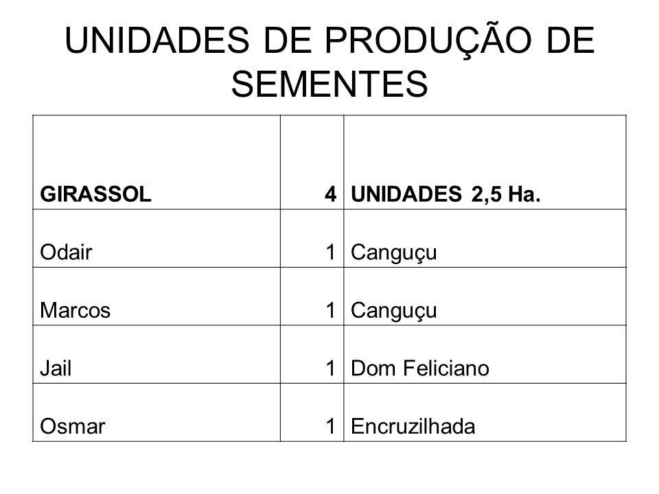 UNIDADES DE PRODUÇÃO DE SEMENTES GIRASSOL4UNIDADES 2,5 Ha.