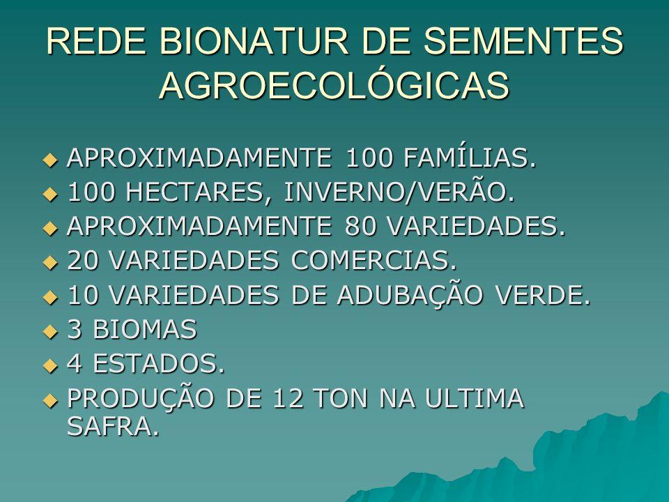 REDE BIONATUR DE SEMENTES AGROECOLÓGICAS APROXIMADAMENTE 100 FAMÍLIAS. APROXIMADAMENTE 100 FAMÍLIAS. 100 HECTARES, INVERNO/VERÃO. 100 HECTARES, INVERN