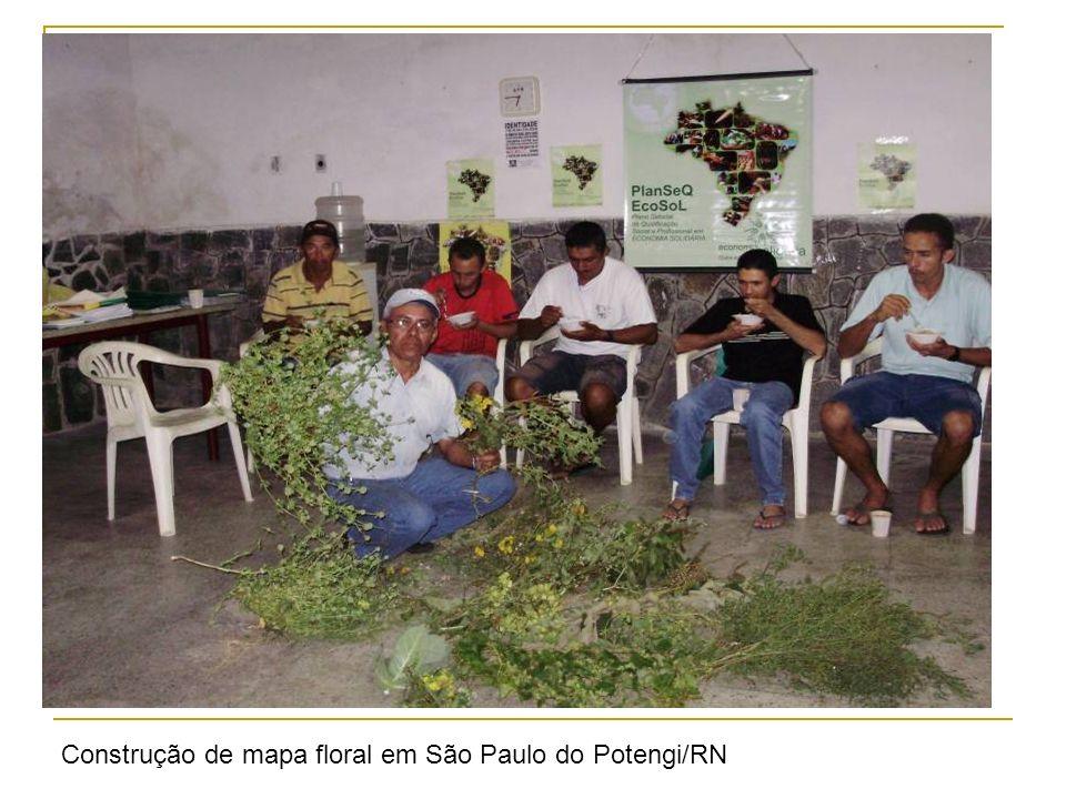 Economia solidária; Comercio justo; Agroecologia; Educação em rede; Políticas públicas de formação; Estrutura do FBES; Auto gestão Conjuntura política
