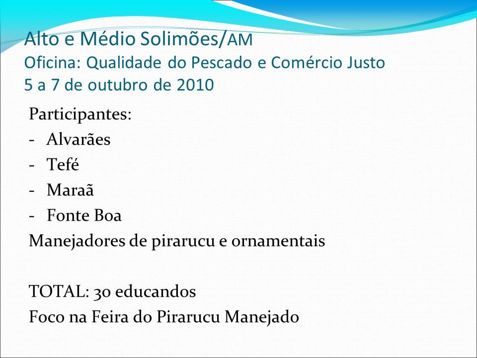 Alto e Médio Solimões/ AM Oficina: Qualidade do Pescado e Comércio Justo 5 a 7 de outubro de 2010 Participantes: -Alvarães -Tefé -Maraã -Fonte Boa Man