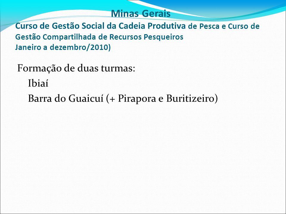 Formação de duas turmas: Ibiaí Barra do Guaicuí (+ Pirapora e Buritizeiro) Minas Gerais Curso de Gestão Social da Cadeia Produtiva de Pesca e Curso de Gestão Compartilhada de Recursos Pesqueiros Janeiro a dezembro/2010)