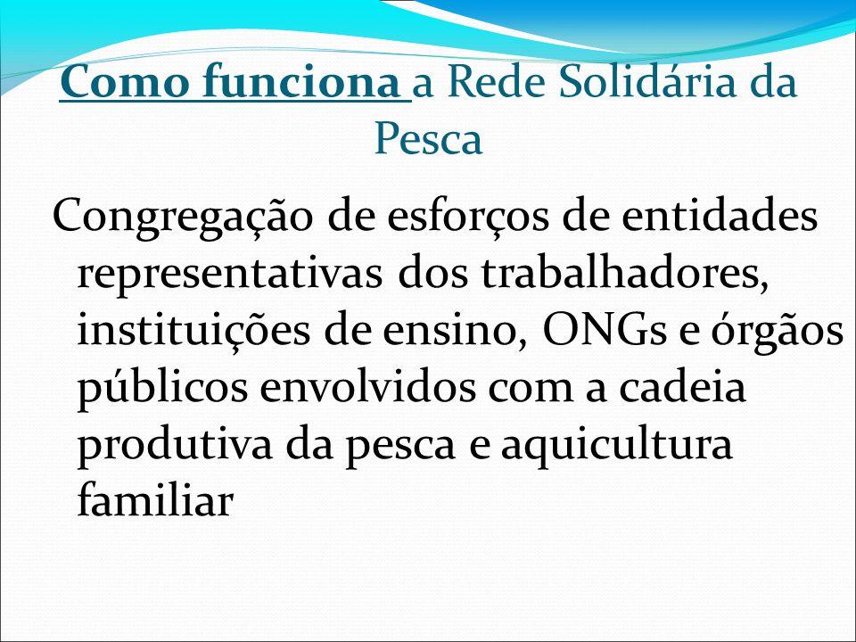 Como funciona a Rede Solidária da Pesca Congregação de esforços de entidades representativas dos trabalhadores, instituições de ensino, ONGs e órgãos