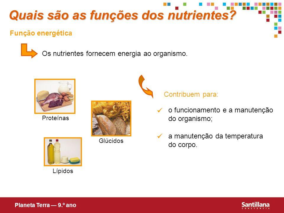 Função energética Os nutrientes fornecem energia ao organismo. Contribuem para: o funcionamento e a manutenção do organismo; a manutenção da temperatu