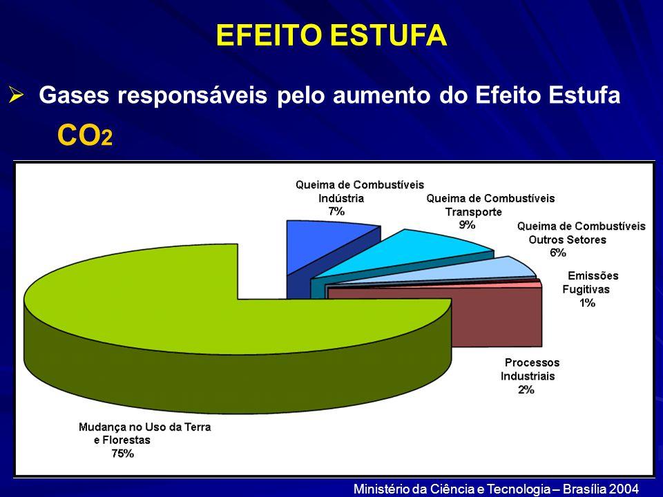 EFEITO ESTUFA Gases responsáveis pelo aumento do Efeito Estufa CO 2 Ministério da Ciência e Tecnologia – Brasília 2004