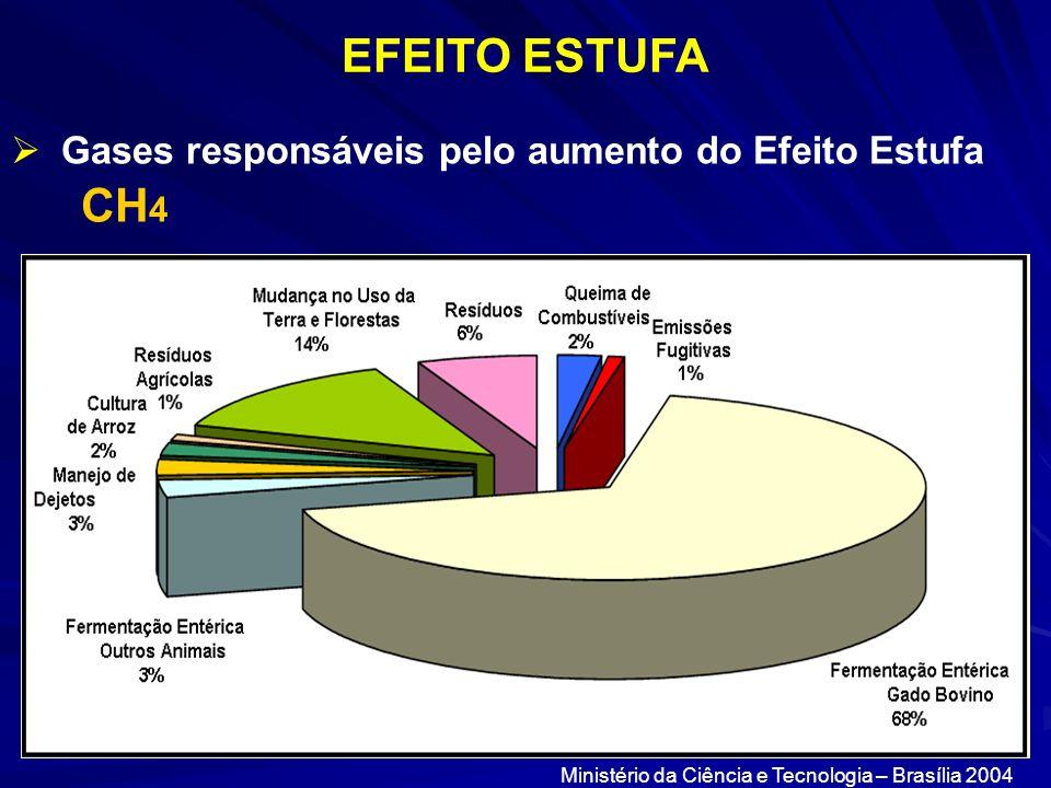 EFEITO ESTUFA Gases responsáveis pelo aumento do Efeito Estufa CH 4 Ministério da Ciência e Tecnologia – Brasília 2004