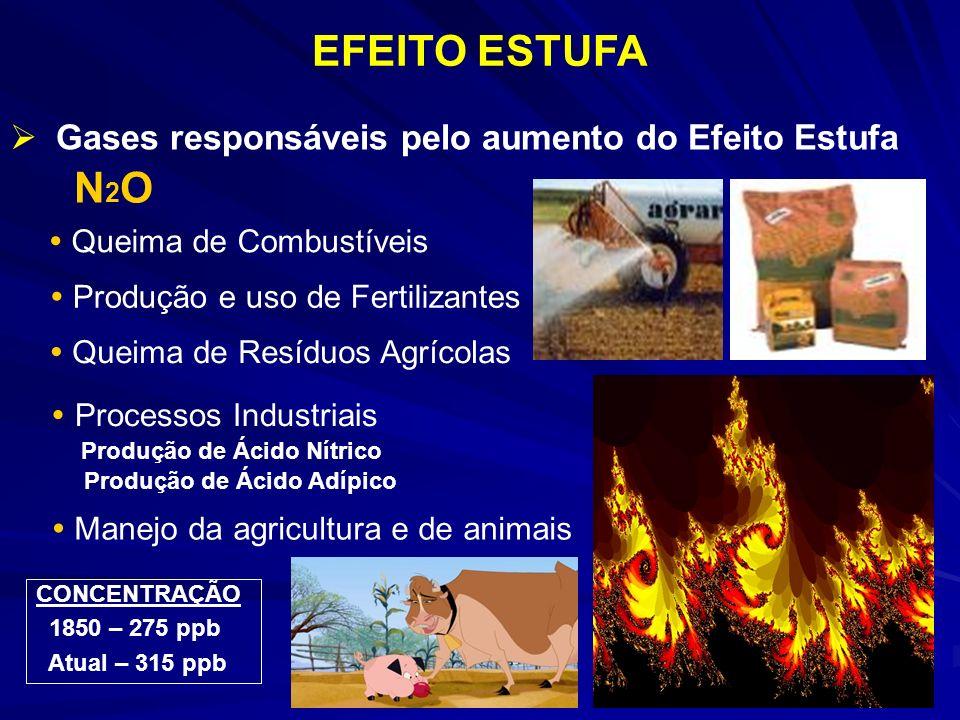 EFEITO ESTUFA Gases responsáveis pelo aumento do Efeito Estufa N2ON2O Queima de Combustíveis Queima de Resíduos Agrícolas Processos Industriais Produção de Ácido Nítrico Produção de Ácido Adípico Produção e uso de Fertilizantes Manejo da agricultura e de animais CONCENTRAÇÃO 1850 – 275 ppb Atual – 315 ppb