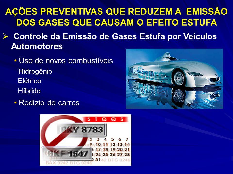 AÇÕES PREVENTIVAS QUE REDUZEM A EMISSÃO DOS GASES QUE CAUSAM O EFEITO ESTUFA Controle da Emissão de Gases Estufa por Veículos Automotores Uso de novos combustíveis Hidrogênio Elétrico Híbrido Rodízio de carros
