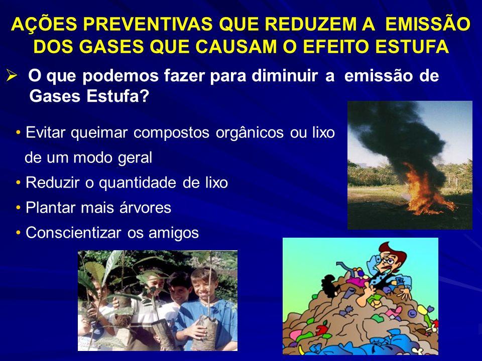 O que podemos fazer para diminuir a emissão de Gases Estufa? AÇÕES PREVENTIVAS QUE REDUZEM A EMISSÃO DOS GASES QUE CAUSAM O EFEITO ESTUFA Evitar queim