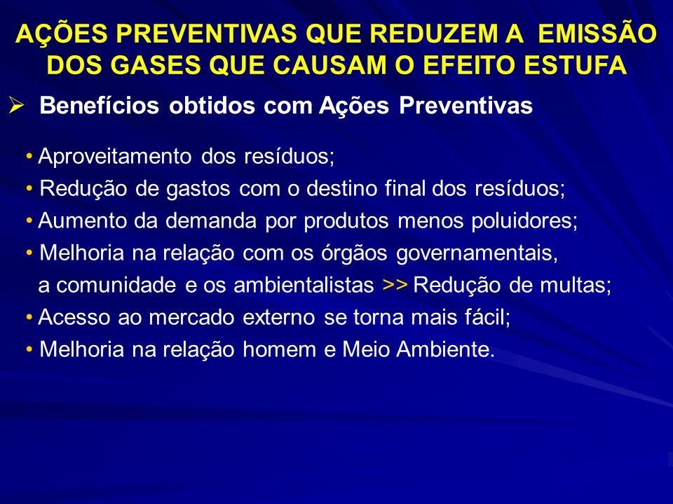 AÇÕES PREVENTIVAS QUE REDUZEM A EMISSÃO DOS GASES QUE CAUSAM O EFEITO ESTUFA Benefícios obtidos com Ações Preventivas Aproveitamento dos resíduos; Red