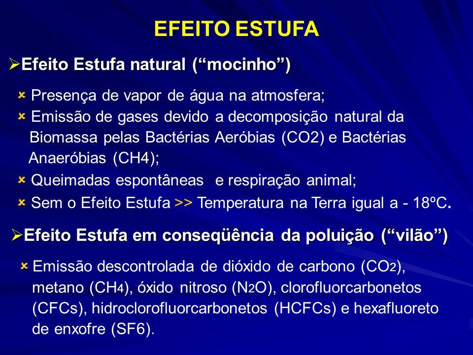 Efeito Estufa natural (mocinho) Efeito Estufa natural (mocinho) Presença de vapor de água na atmosfera; Emissão de gases devido a decomposição natural da Biomassa pelas Bactérias Aeróbias (CO2) e Bactérias Anaeróbias (CH4); Queimadas espontâneas e respiração animal; Sem o Efeito Estufa >> Temperatura na Terra igual a - 18ºC.