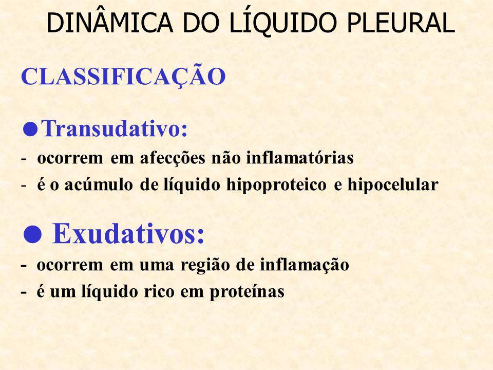 CLASSIFICAÇÃO Transudativo: - ocorrem em afecções não inflamatórias - é o acúmulo de líquido hipoproteico e hipocelular Exudativos: - ocorrem em uma r