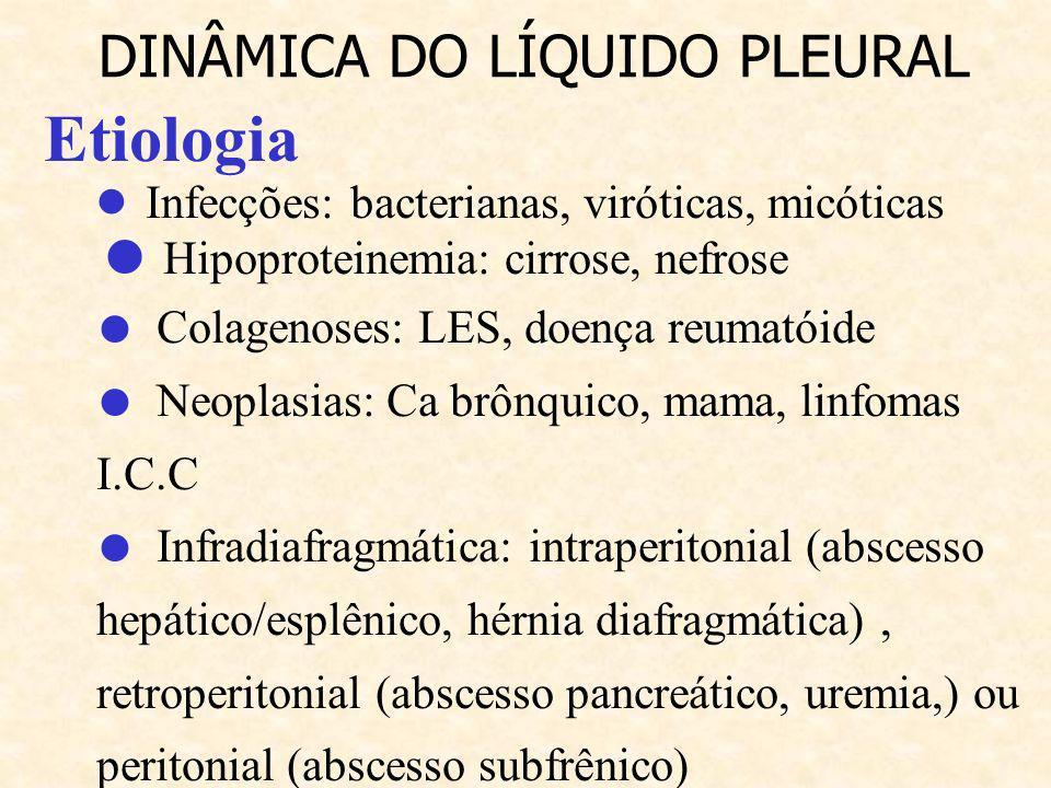 CLASSIFICAÇÃO Transudativo: - ocorrem em afecções não inflamatórias - é o acúmulo de líquido hipoproteico e hipocelular Exudativos: - ocorrem em uma região de inflamação - é um líquido rico em proteínas DINÂMICA DO LÍQUIDO PLEURAL