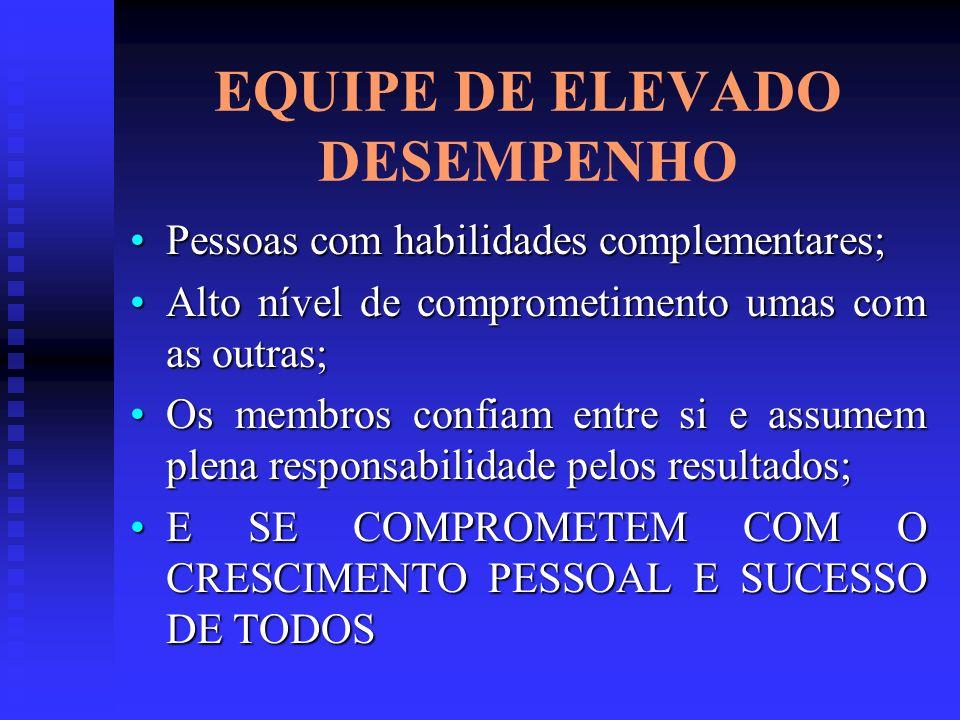 EQUIPE DE ELEVADO DESEMPENHO Pessoas com habilidades complementares;Pessoas com habilidades complementares; Alto nível de comprometimento umas com as