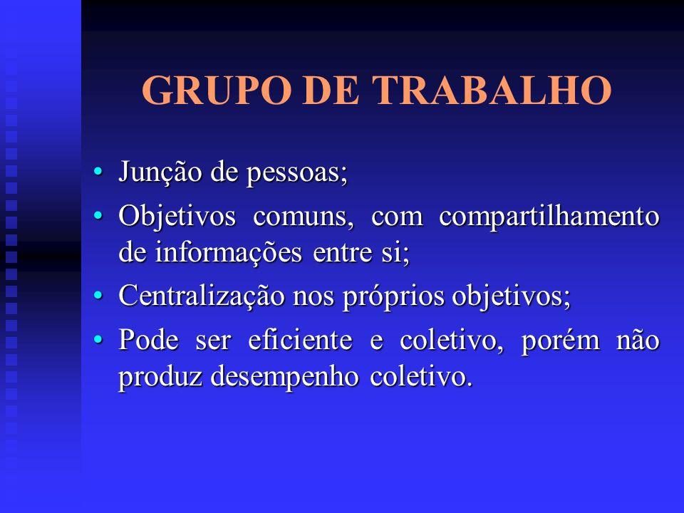 GRUPO DE TRABALHO Junção de pessoas;Junção de pessoas; Objetivos comuns, com compartilhamento de informações entre si;Objetivos comuns, com compartilh