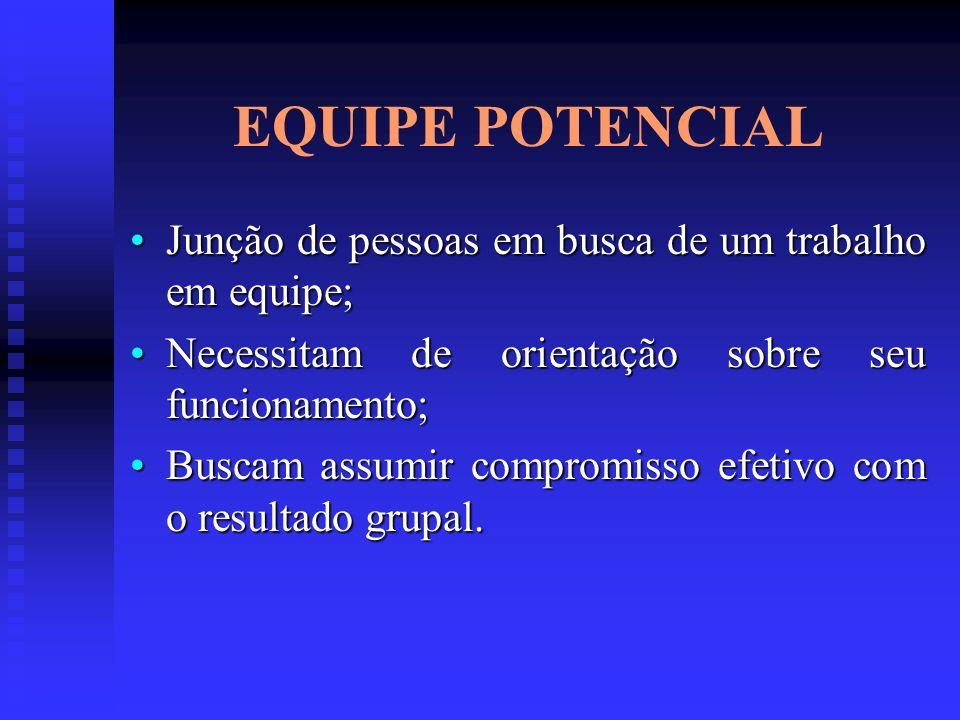 EQUIPE POTENCIAL Junção de pessoas em busca de um trabalho em equipe;Junção de pessoas em busca de um trabalho em equipe; Necessitam de orientação sob