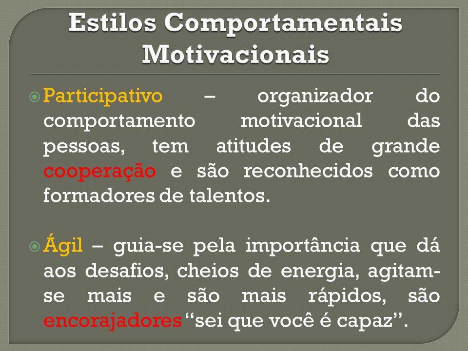 Participativo – organizador do comportamento motivacional das pessoas, tem atitudes de grande cooperação e são reconhecidos como formadores de talento