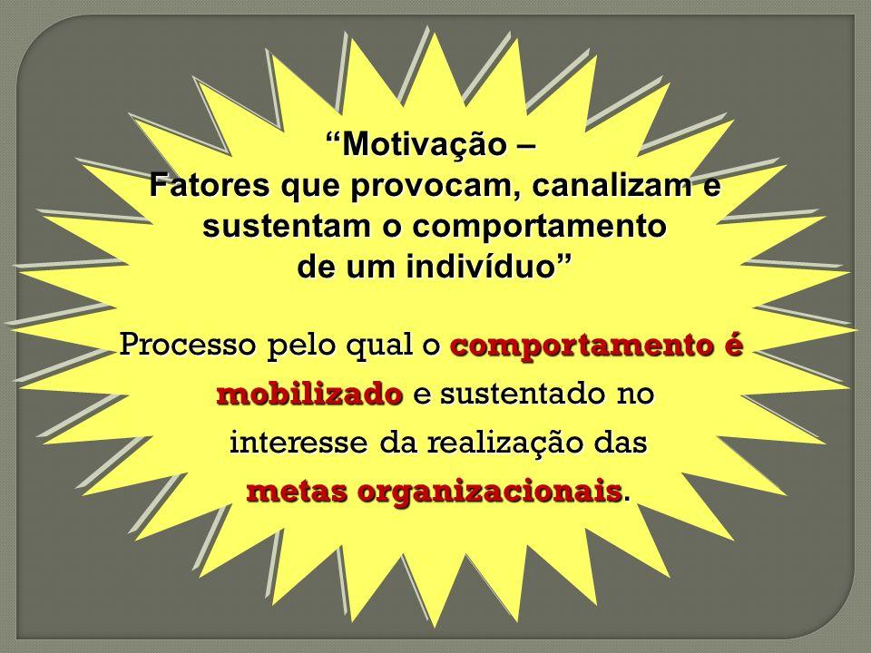 Motivação – Fatores que provocam, canalizam e sustentam o comportamento sustentam o comportamento de um indivíduo Processo pelo qual o comportamento é